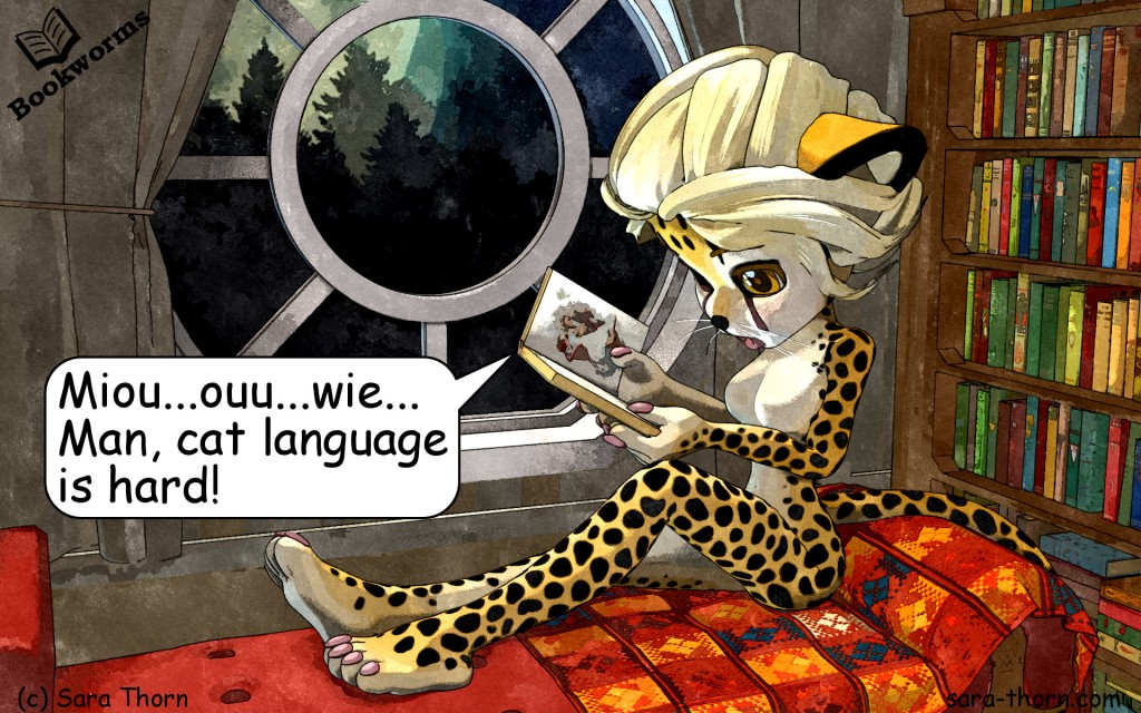Cheetah studying cat language
